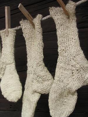 450px-Socks_III