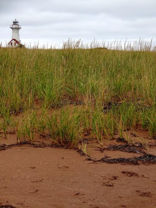 a pile of sand | Matilda Magtree